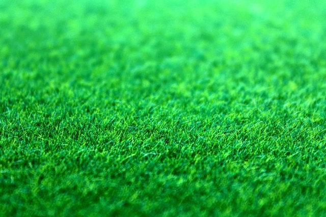 fallacies about synthetic grass