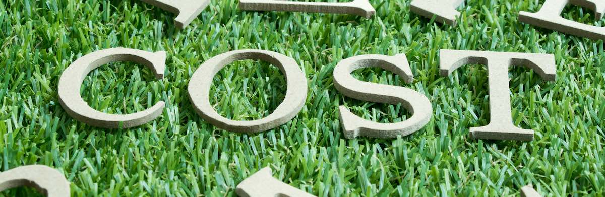 How Artificial Grass Cost Can Save You Money