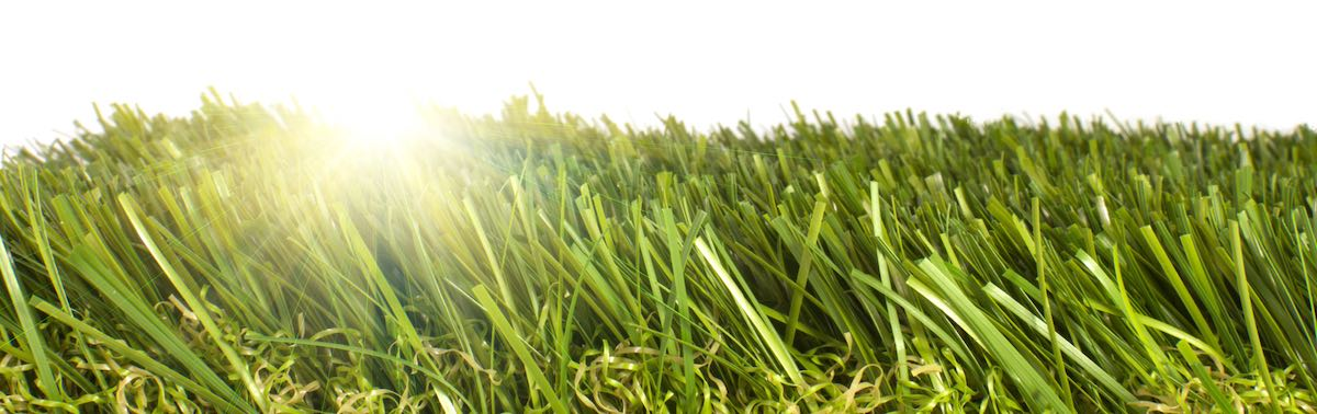 common problems with artificial grass