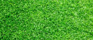 What to Expect from an Artificial Grass Installation