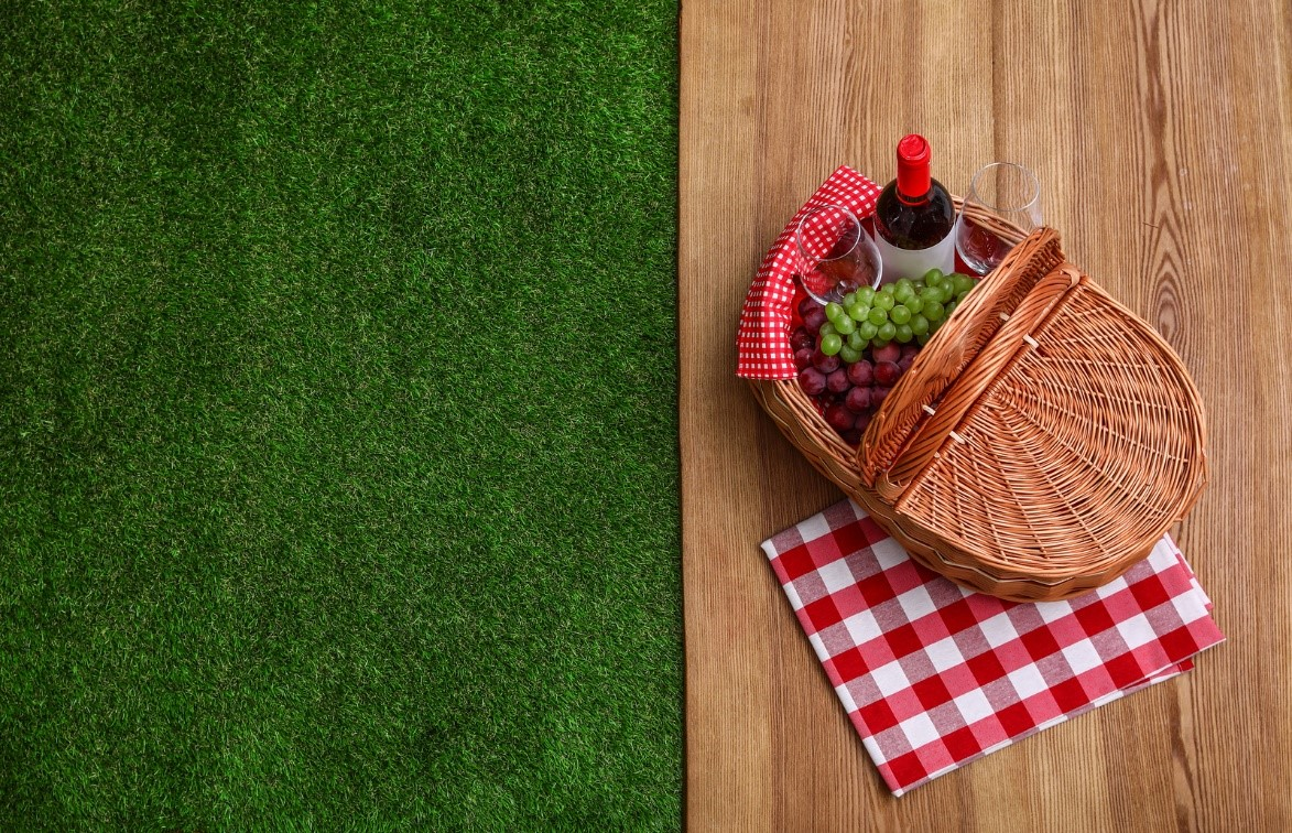outdoor picnic with artificial grass