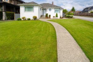 front lawn artificial turf